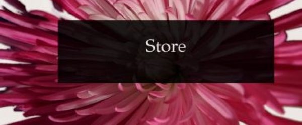 a pink flower with dark rectangle with store written